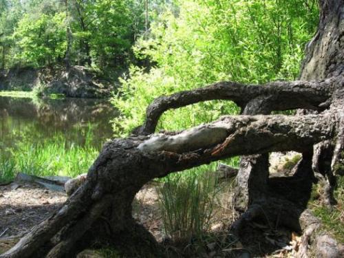 Přírodní památka Stříbrné jezírko