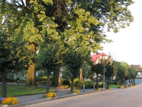Městys Spálov